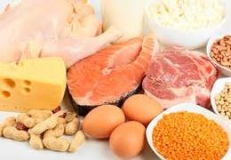 Питание при ЭКО протоколе - белковая диета при ЭКО для женщины ...